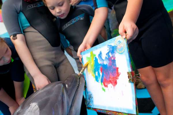 Dolphin therapy for children from Zabota Charitable Foundation, photo on the website therapynemo