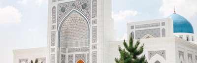 Контакты центра дельфинотерапии в городе Ташкент, фото