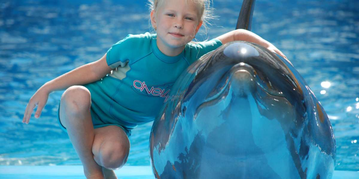 Dolphin therapy on the website therapynemo.com , photo №1